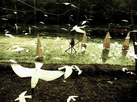 幸せの白い鳥プロジェクト in イフガオ 「原始の森にホワイト・バードが戻ってきた日」_b0128901_1422748.jpg