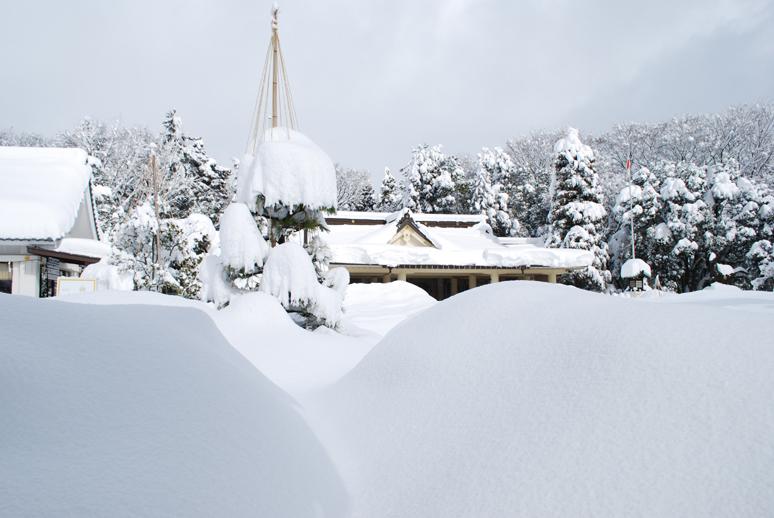 大雪!_f0067122_18192785.jpg