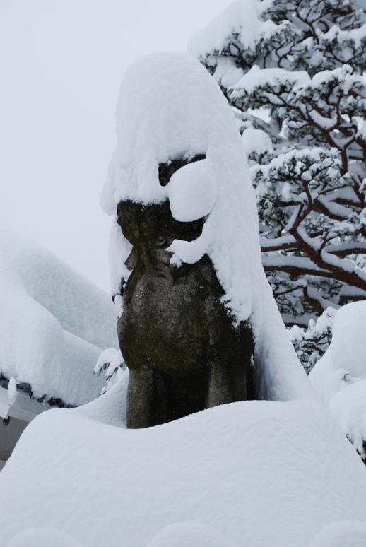 大雪!_f0067122_18195567.jpg