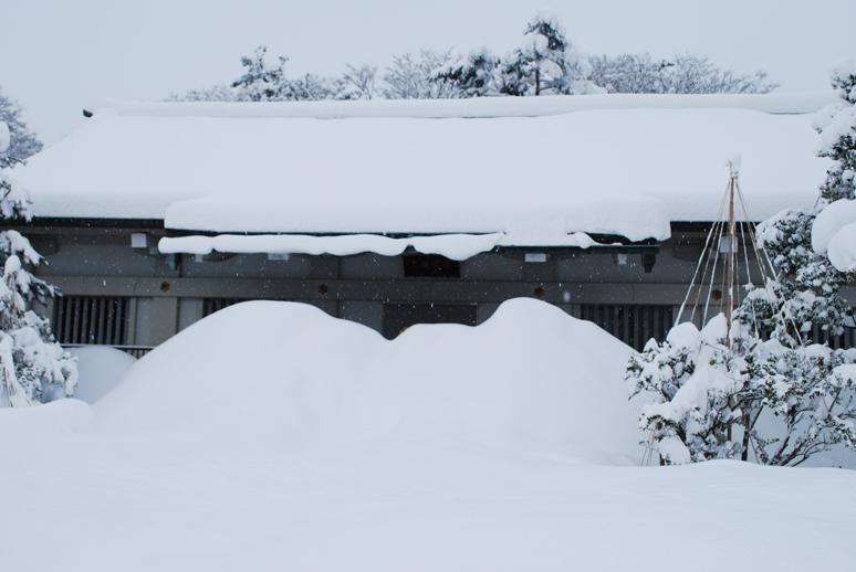 大雪!_f0067122_18202270.jpg