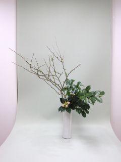 枝物でいける_c0165824_18542265.jpg