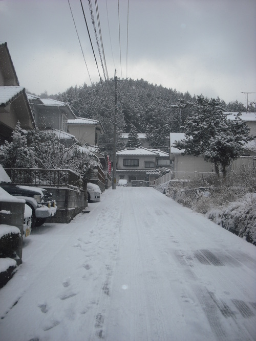 雪男達となまけもの。_d0125228_14185423.jpg