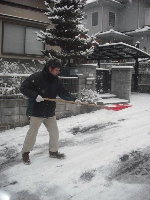 雪男達となまけもの。_d0125228_14222252.jpg