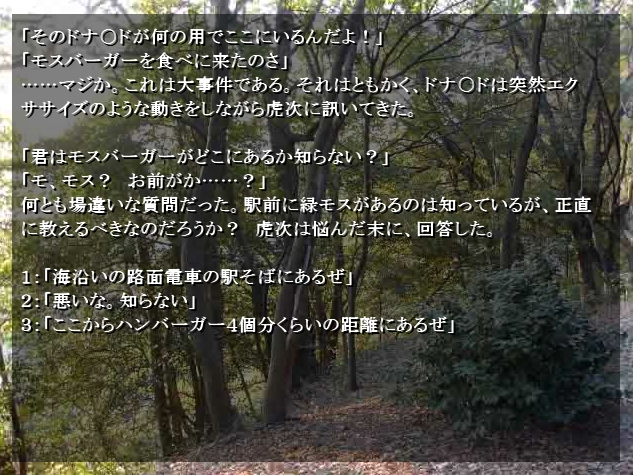 c0092143_61104.jpg