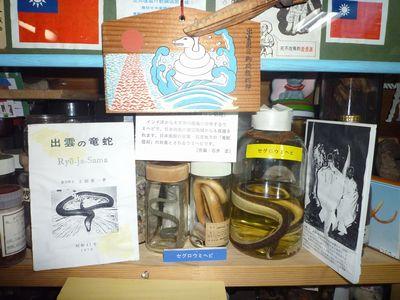 漂着物博物館(2)流れついた人の営みと神々_c0222861_164721.jpg