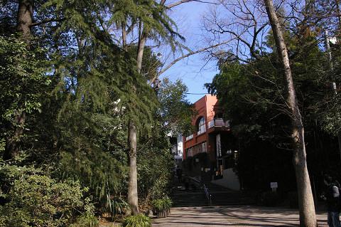 吉祥寺に行きましたPart1 井の頭自然文化園_a0186568_22114317.jpg