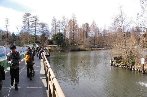 吉祥寺に行きましたPart1 井の頭自然文化園_a0186568_22151478.jpg