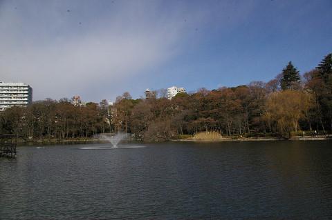 吉祥寺に行きましたPart1 井の頭自然文化園_a0186568_22262576.jpg
