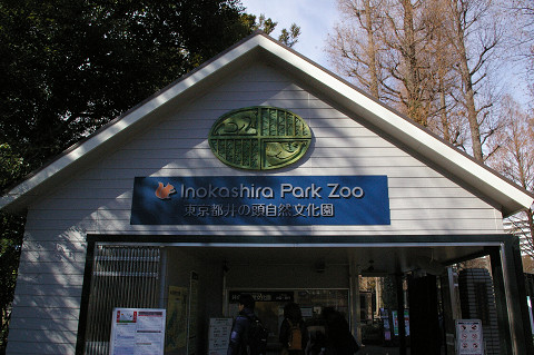 吉祥寺に行きましたPart1 井の頭自然文化園_a0186568_222889.jpg