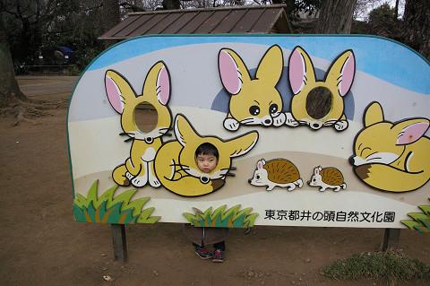 吉祥寺に行きましたPart1 井の頭自然文化園_a0186568_22432252.jpg
