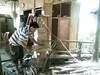 Pic_0042