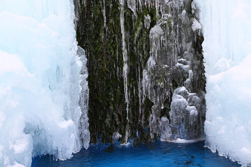 1/28 あいにくのくもり空だが 氷濤は前よりいい出来 綺麗 _a0160581_2152219.jpg