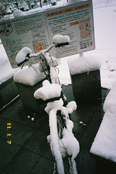2011年1月の一日一枚(1~13日)_e0051186_20441484.jpg