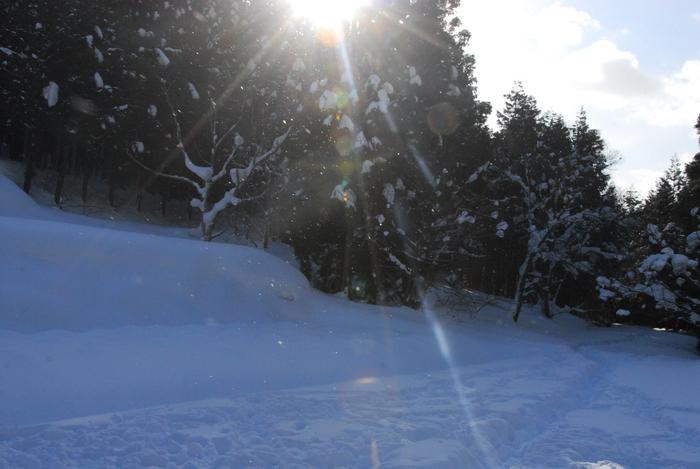 豪雪地方でランチ。_a0049296_20513520.jpg