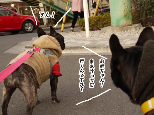 b0134197_21412436.jpg