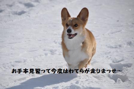 f0212597_1416536.jpg