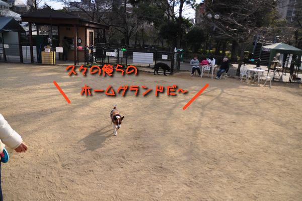 f0203612_22415725.jpg