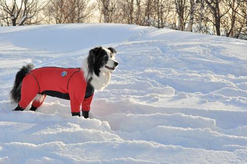 雪遊び 峰の原高原_f0098338_0122818.jpg