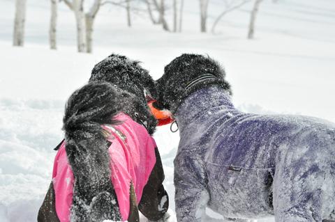 雪遊び 峰の原高原_f0098338_0203678.jpg