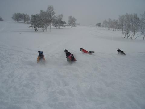 雪遊び 峰の原高原_f0098338_0391211.jpg