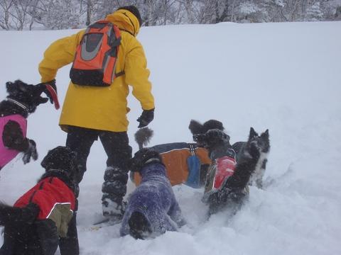 雪遊び 峰の原高原_f0098338_0493110.jpg