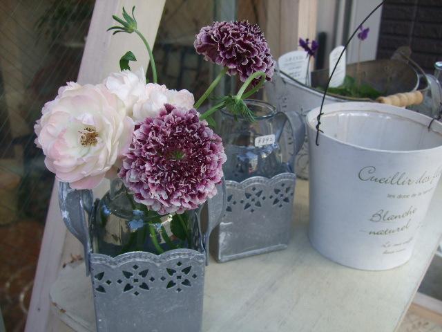 オークリーフ(春の花に合わせて・・・)_f0049672_1223096.jpg