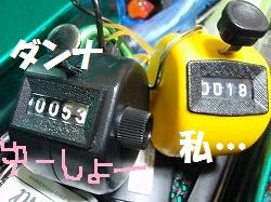 b0052375_15171459.jpg