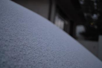 雪_a0049695_7385521.jpg