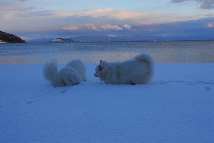 豪雪地方でランチ。 2_a0049296_19482227.jpg