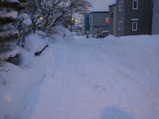 雪のすごさに完敗・・・_f0202703_20493519.jpg