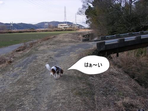 d0165124_141021100.jpg