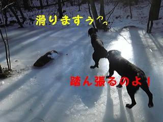 f0148927_22284640.jpg