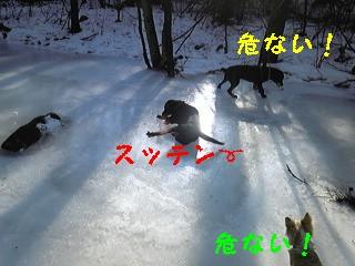 f0148927_22345059.jpg