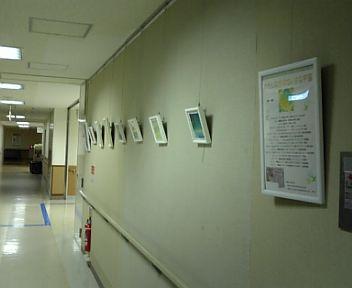 病院の絵を交換しました☆_f0183846_20324643.jpg