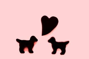 番外編sarajyaアラカルト* 2月だよ!Valentineだよ♡_d0034447_1013739.jpg