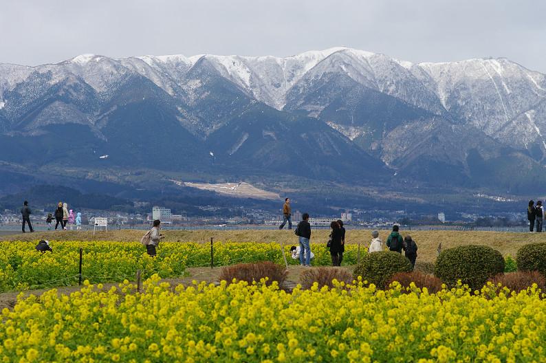 琵琶湖 なぎさ公園 ~春の予感?~_f0152550_22361745.jpg