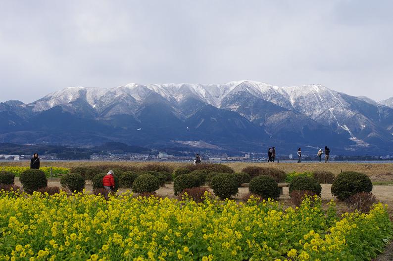 琵琶湖 なぎさ公園 ~春の予感?~_f0152550_22363279.jpg