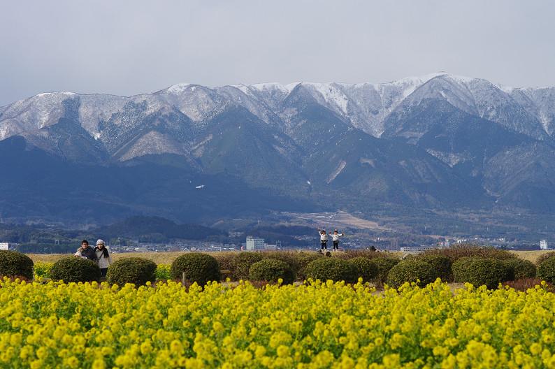 琵琶湖 なぎさ公園 ~春の予感?~_f0152550_22364364.jpg