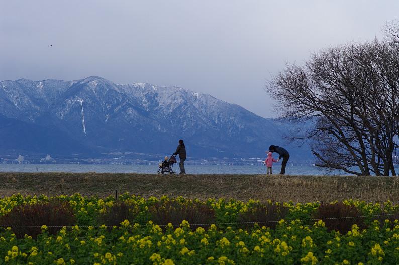 琵琶湖 なぎさ公園 ~春の予感?~_f0152550_22383839.jpg