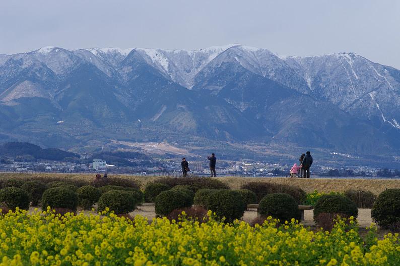 琵琶湖 なぎさ公園 ~春の予感?~_f0152550_22384344.jpg