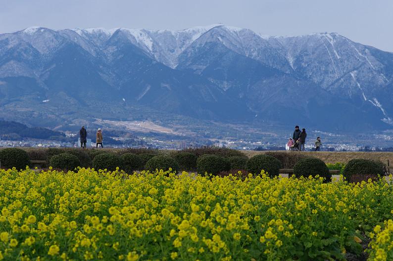 琵琶湖 なぎさ公園 ~春の予感?~_f0152550_22384948.jpg