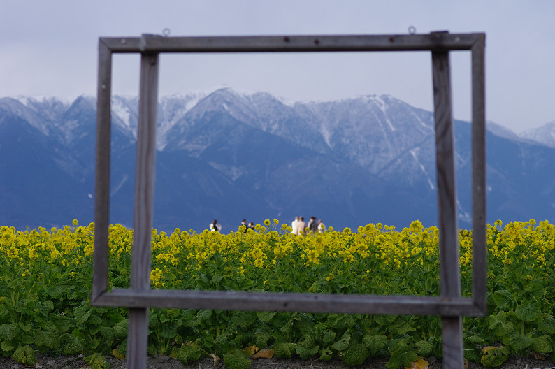 琵琶湖 なぎさ公園 ~春の予感?~_f0152550_2239259.jpg