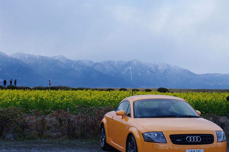 琵琶湖 なぎさ公園 ~春の予感?~_f0152550_2239793.jpg