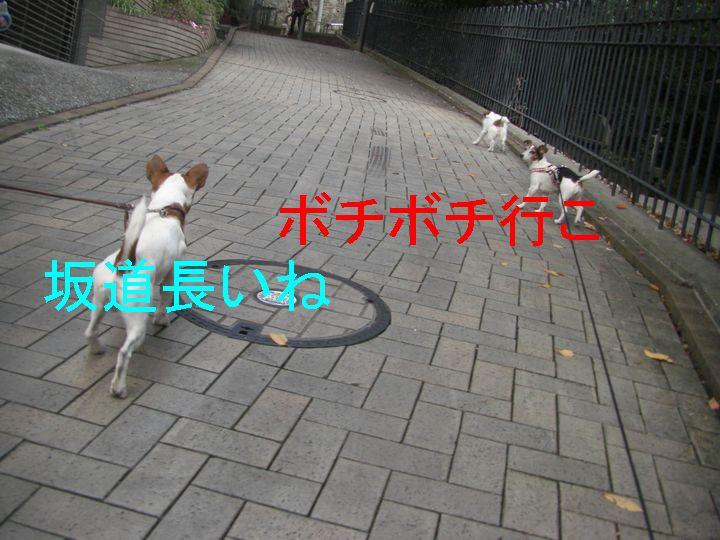 f0053952_13275941.jpg