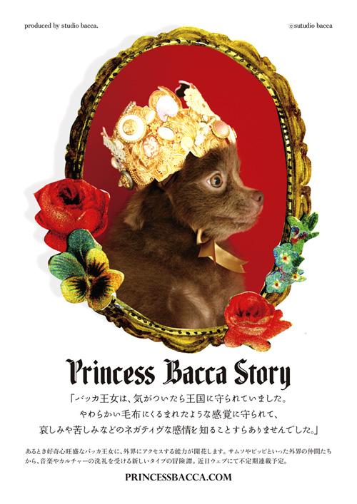 Princess Bacca Story_b0156872_2245306.jpg