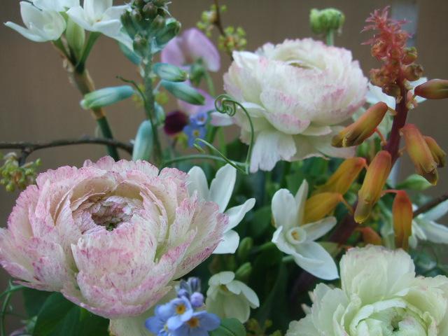 オークリーフ(春の小さな球根花のアレンジメント)_f0049672_16354172.jpg