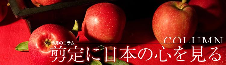 剪定に日本の心を見る_d0198781_0445838.jpg
