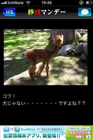c0132387_23561542.jpg