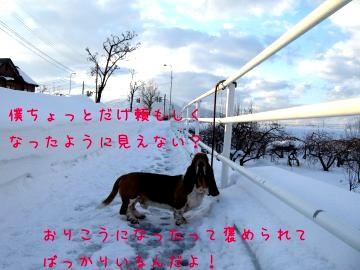 f0205887_1913940.jpg