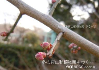 b0142197_141837.jpg